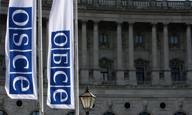 Флаги с логотипом ОБСЕ на русском и английском языках перед Хофбург в Вене. (OSCE/Mikhail Evstafiev)