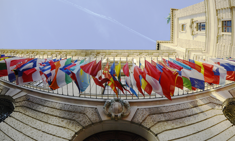 Flags of the 57 OSCE participating States outside the Hofburg Congress Center, Vienna, Austria, October 13, 2017. (USOSCE/Colin Peters)
