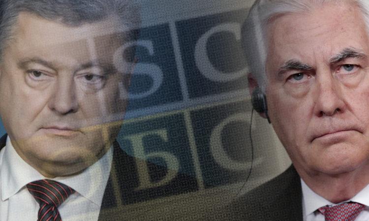 OSCE SMM Monitor Death
